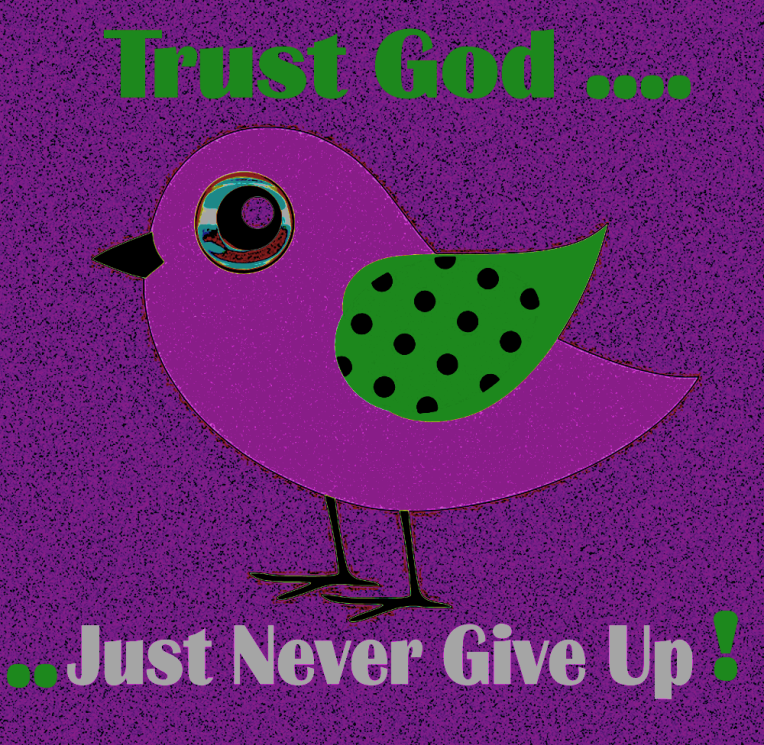 just never give up bird 2